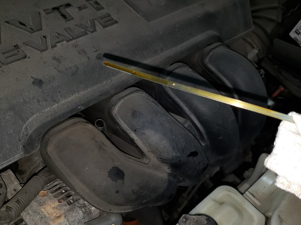A Thousand Dollar Habit: Or, Should I Check My OIl?